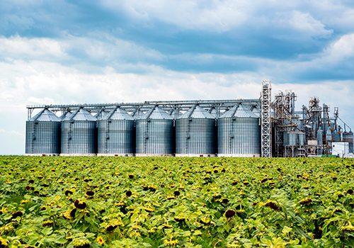 Tecnología, una solución inteligente para el futuro de la industria alimentaria